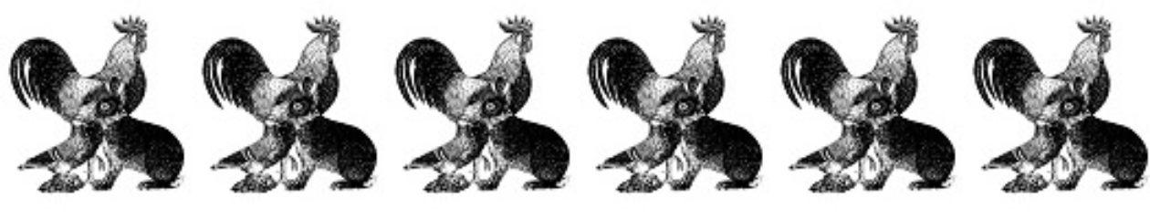Kreisverband der Kleintierzüchter Filder